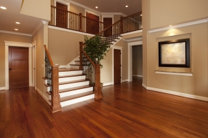 Best House Painters in St Pete